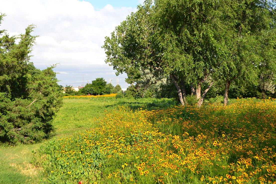 Forest Park Lake Facility Directory Table List Garden City